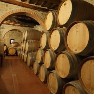 Palazzo wine cellar